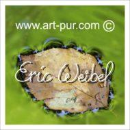 Blog Art-pur.com